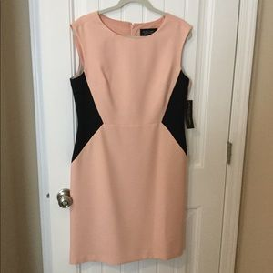 Pink Black Label by Evan-Picone dress